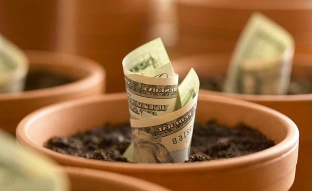 Что такое инвестиционный портфель, и каким он бывает?